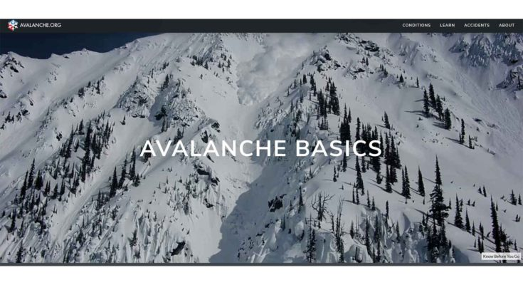 Avalanche Basics