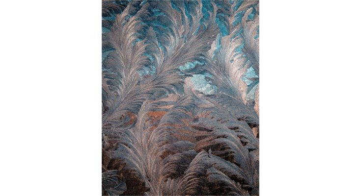 Feathered ice crystals. Photo by Kirill Pershin on Unsplash.