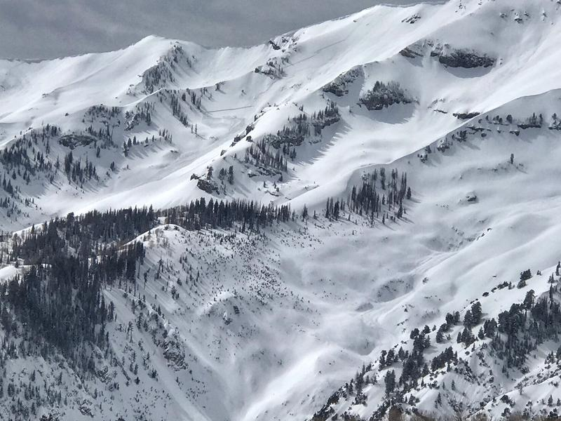 Close-up of one bowl south of Middle Basin.