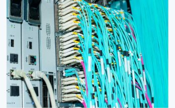 blue network cables - Photograph: Volker Schlichting/Getty Images