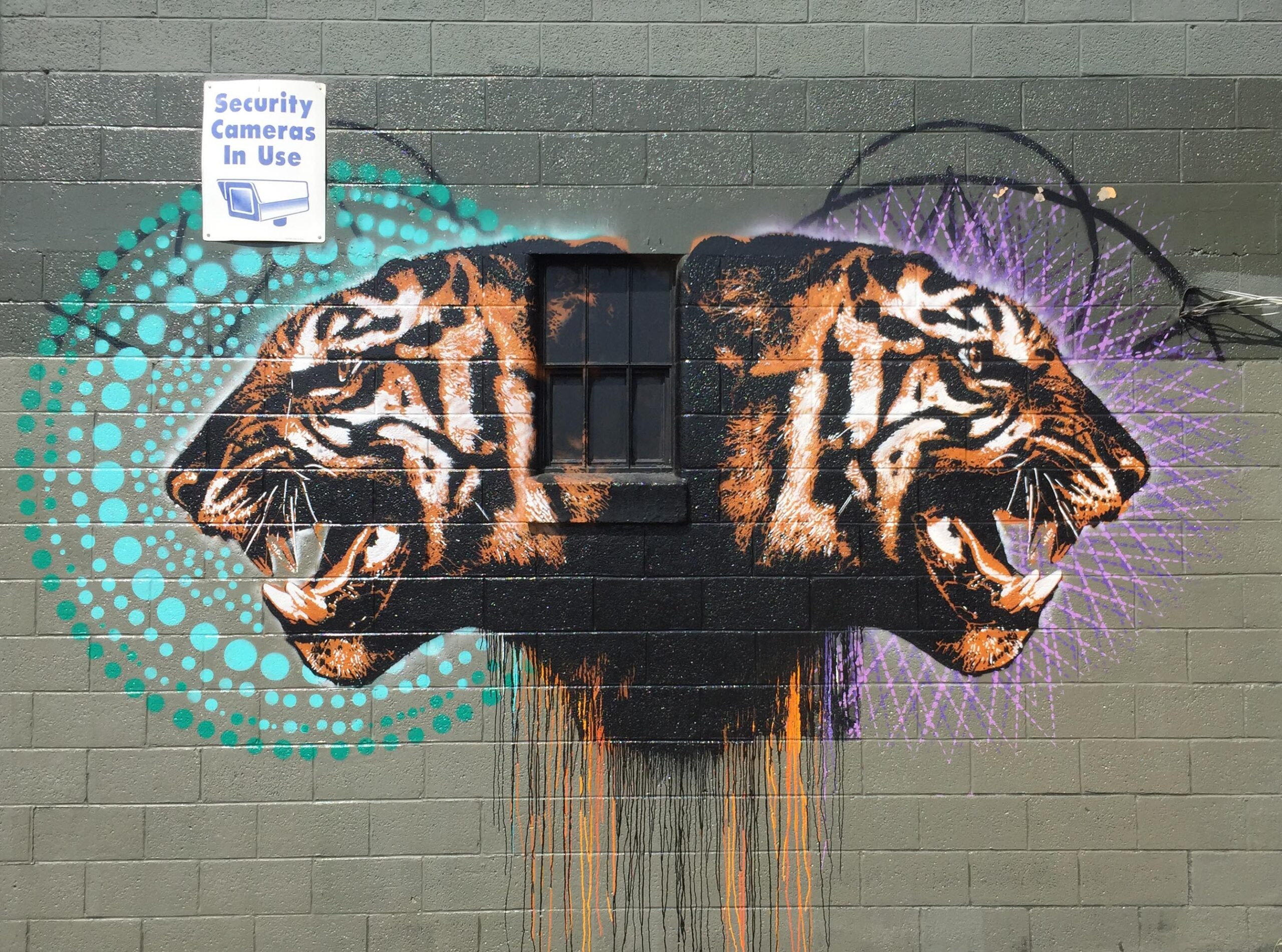 TITLE: Untitled (two tigers)