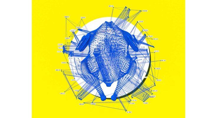chicken network - Pablo Delcan
